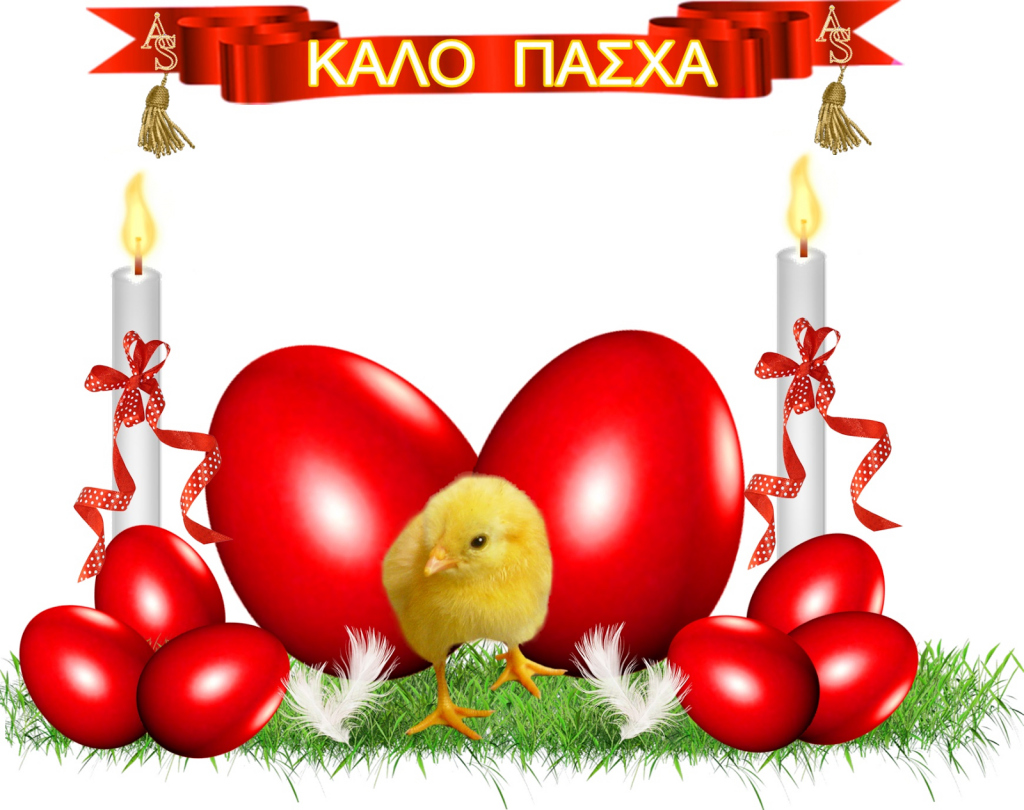 pasha1